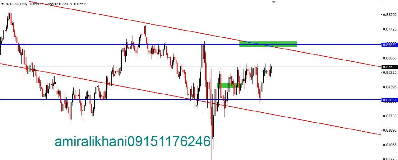 NZD CAD DAILY